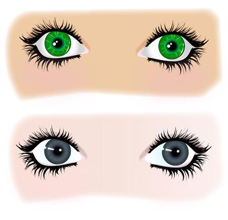 lash: Illustration of Gray and green eyes