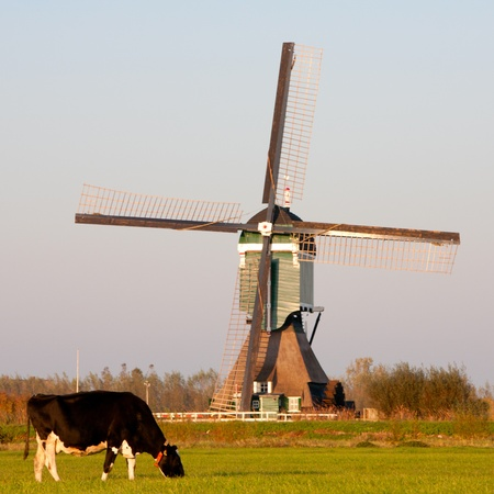 Traditional Dutch windmill Stock Photo - 11133236