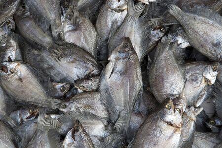 fish vendor: Fresh fish