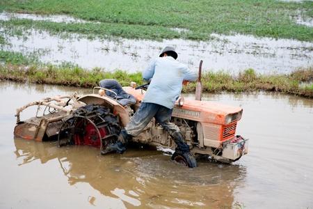 HOI AN, VIETNAM - DECEMBER 19, 2011: Vietnamese farmer working in the field in Hoi An, 19 december 2011, Hoi An, Vietnam
