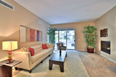 Well Appointed Showcase Living Room with Interior Decoration photo
