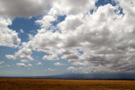 Clouds over the savannah photo