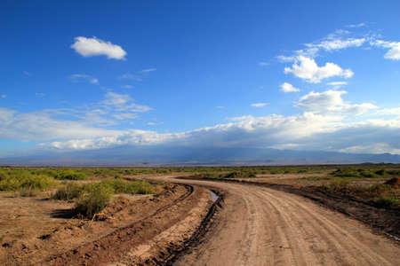 Route � travers la savane Banque d'images