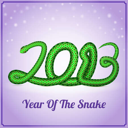 New Year card with a snake  symbol of 2013 year , vector eps10 illustration Stock Vector - 15995064