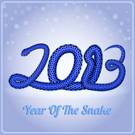 New Year card with a blue snake  symbol of 2013 year , vector eps10 illustration Stock Vector - 15995063