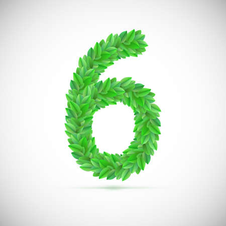 Number six, made up of green leaves, vector illustration Vector