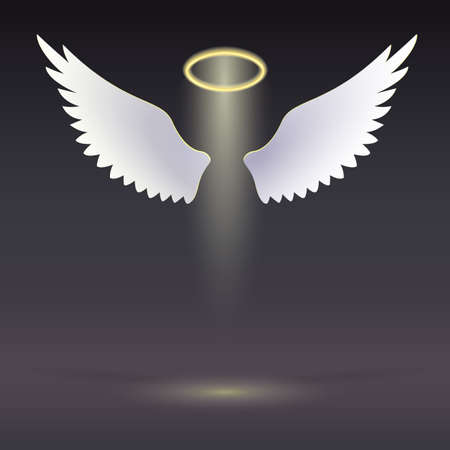 angel white: Angel wings with golden halo hovering in the dark  Wings and golden halo
