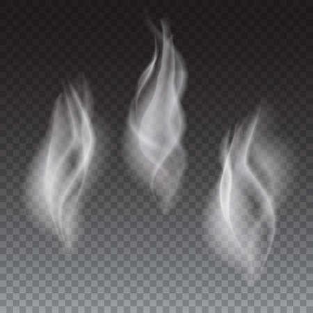 fumar: Cigarrillos o humo coffe olas blancas delicadas en fondo transparente ilustraci�n vectorial