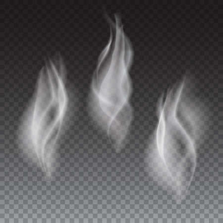 abstract smoke: Delicate white cigarette or coffe smoke waves on transparent background vector illustration