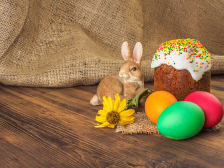 Easter cake and easter colored egg with dry flower. Russian and Ukrainian, orthodox, slavic traditional Easter kulich on rural background from old wood and burlap. Selective focus. Stock Photo