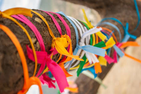 Wish tree with many multicolour ribbons tied on its bole, close up view. Photographed in Crimea. Selective soft focus. Blurred background