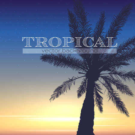 Fond tropical. Silhouette de palmier et ciel coucher de soleil sur fond tropical. Soirée d'été. Conception de vecteur pour les bannières.