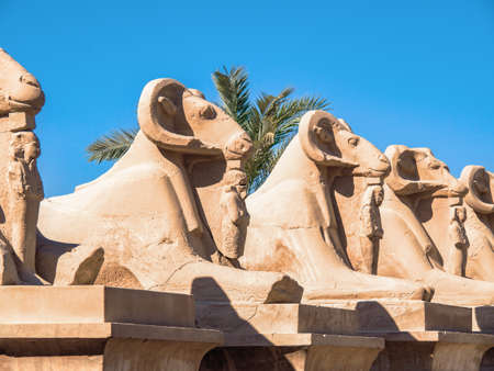 Sculptures of criosphinx in Karnak temple in Luxor, medium view. Row of ancient statues on background of clear blue sky. Selective soft focus. Blurred background