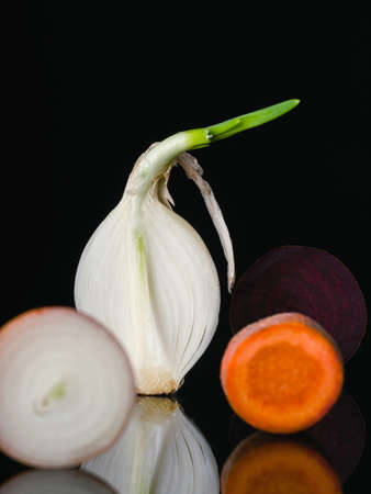Composition from the cut raw onion, carrot and beetroot. Raw vegetables Low key technique. Vegetables standing vertically