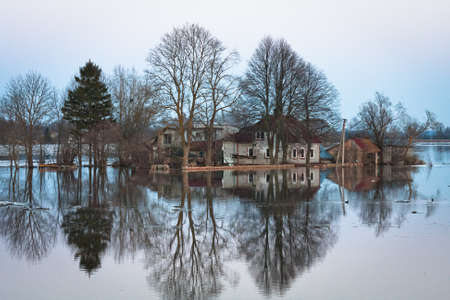 residential tree service: flooding