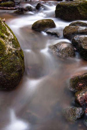 stream flowing freshwater photo