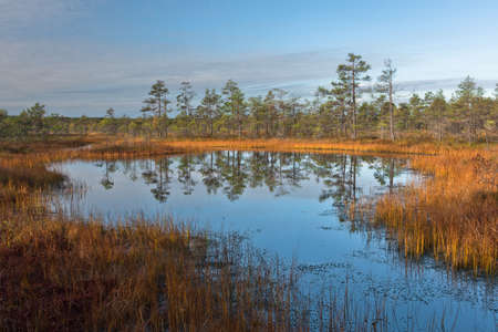 wide  wet: marsh landscape with clouds Stock Photo