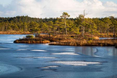 bog: bog lake with floating island