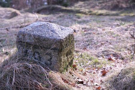 Wahrzeichen im Wald Standard-Bild - 99433535