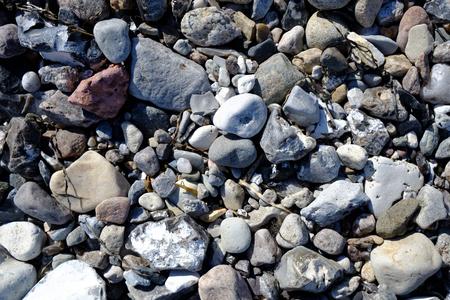 Stony beach on the Baltic Sea Reklamní fotografie