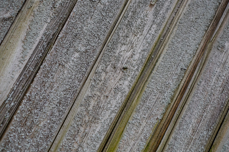 Wooden panel of a wall