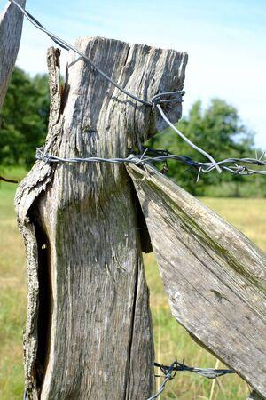 Fencing at a paddock Reklamní fotografie - 129325610
