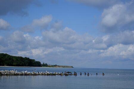 Shore region on the Baltic Sea