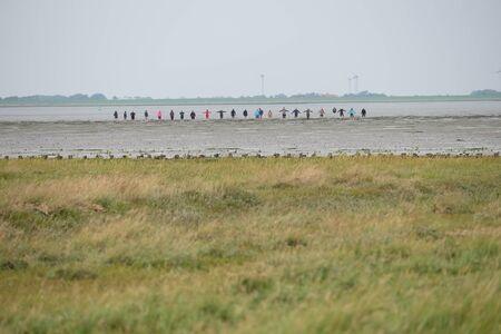 Human chain in the Wadden Sea