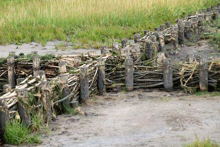 Pile dwelling serves as Wattenmeer coastal defense