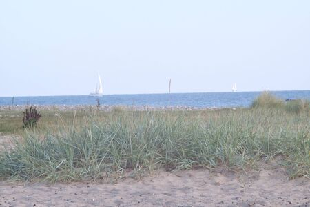 Beach section on the Baltic Sea
