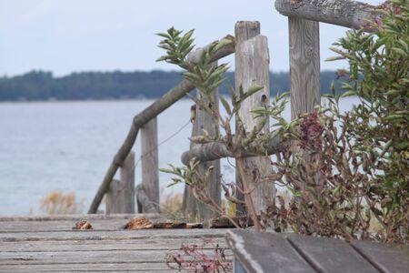 Dilapidated wooden bridge leads through a coastal area