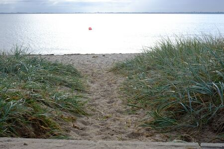 The way to the sea through the dunes