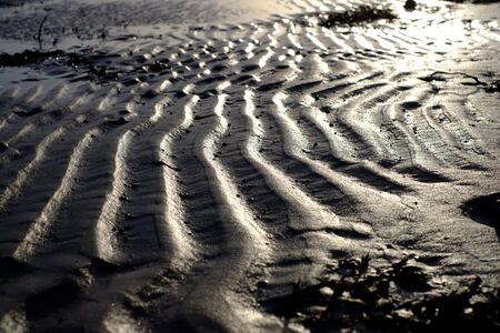 Sand waves - ripple marks on the seabed