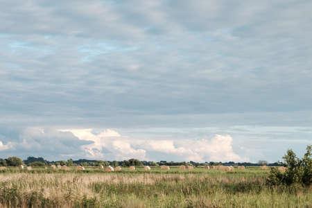 Wide land over a plain