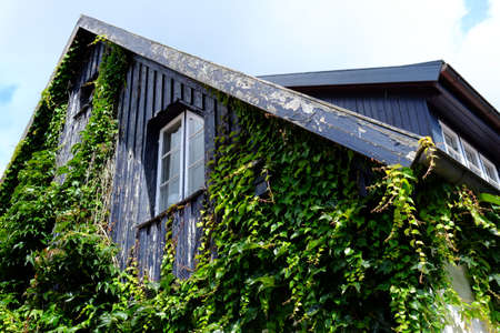 Old wooden gable with window Standard-Bild