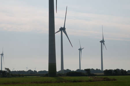 A wind farm generates electricity