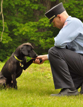 first responder: Uniformed man shakes dogs paw Editorial
