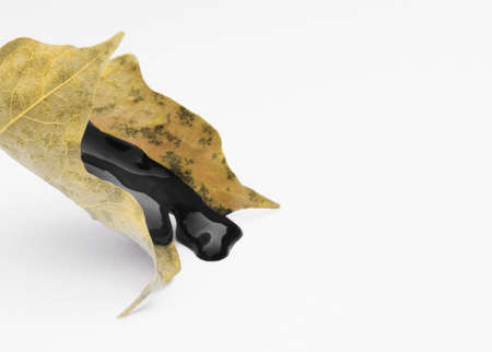 Yellow leaf with dripping black wet paint