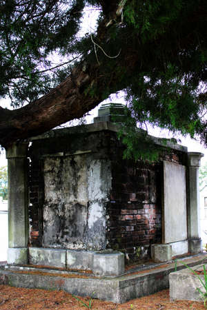 a crumbling old crypt beneath a shady tree branch