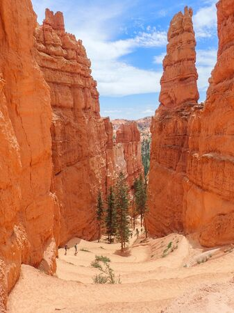 Serpentine Trail Descends Into Canyon Surrounded by Towering Red Hoodoos in Bryce