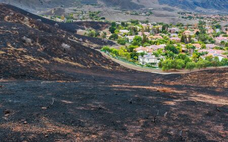 California Hillside After a Wildfire Depicting How Close Fire Came to Neighborhood