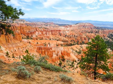 Landscape of Red Hoodoos and Spires in Bryce Utah