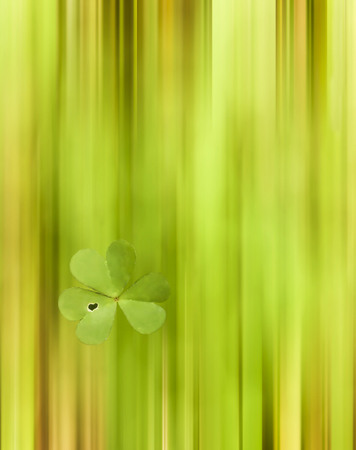 Abstract Blur of clover Field with One Highlighted Clover with Heart in Leaf