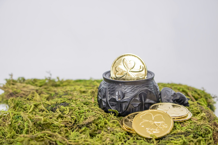 Small Black Oak Irish Pot Holds Gold Coins on Moss with White Background