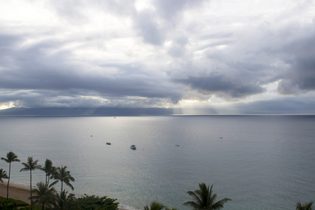 High Angle Seascape with Palm Trees in Foreground and Island in Background