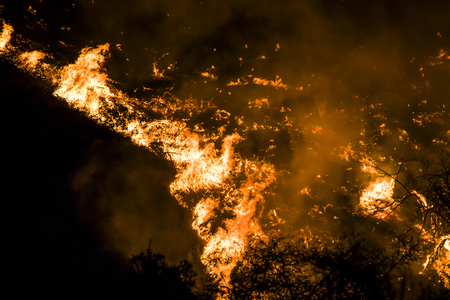 Flames at Night Twist into Tornado Shape During California Brushfire