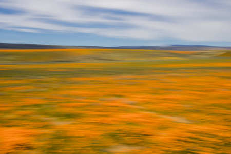 Abstract desert landscape with glowing orange fields of poppies and hills under blue sky using motion blur as a color study.