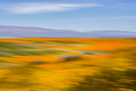 Vibrant colors of a desert landscape blooming with wildflowers with hills and blue sky.  Conceptual image using motion blur for study of color. Stock Photo