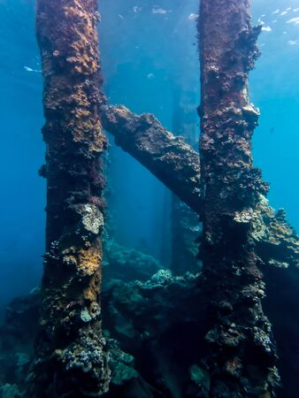 Underwater view of collapsed pier in Maui.  Pier is covered in coral and sea life in abstract image.