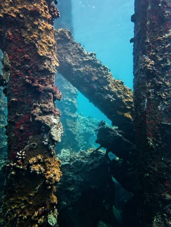 Coral crusted underwater landscape with thick pier lines and shapes.